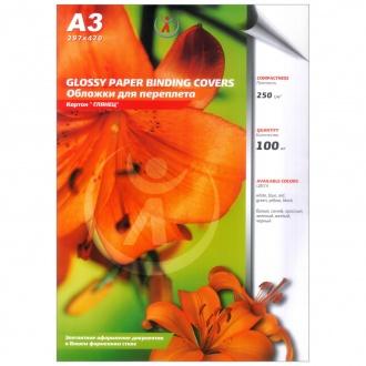 Обложки для переплета картонные, текстура: глянец, 250г/м2, А3, белый